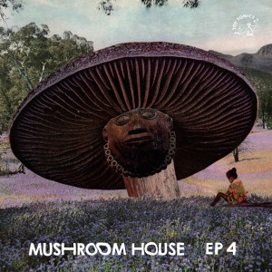 Mushroom-Vinyl-Cover-1-front_m